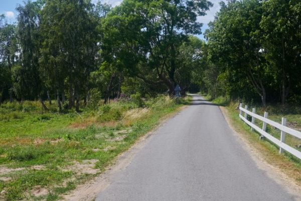 På slingrande väg till Bäckhalladalen